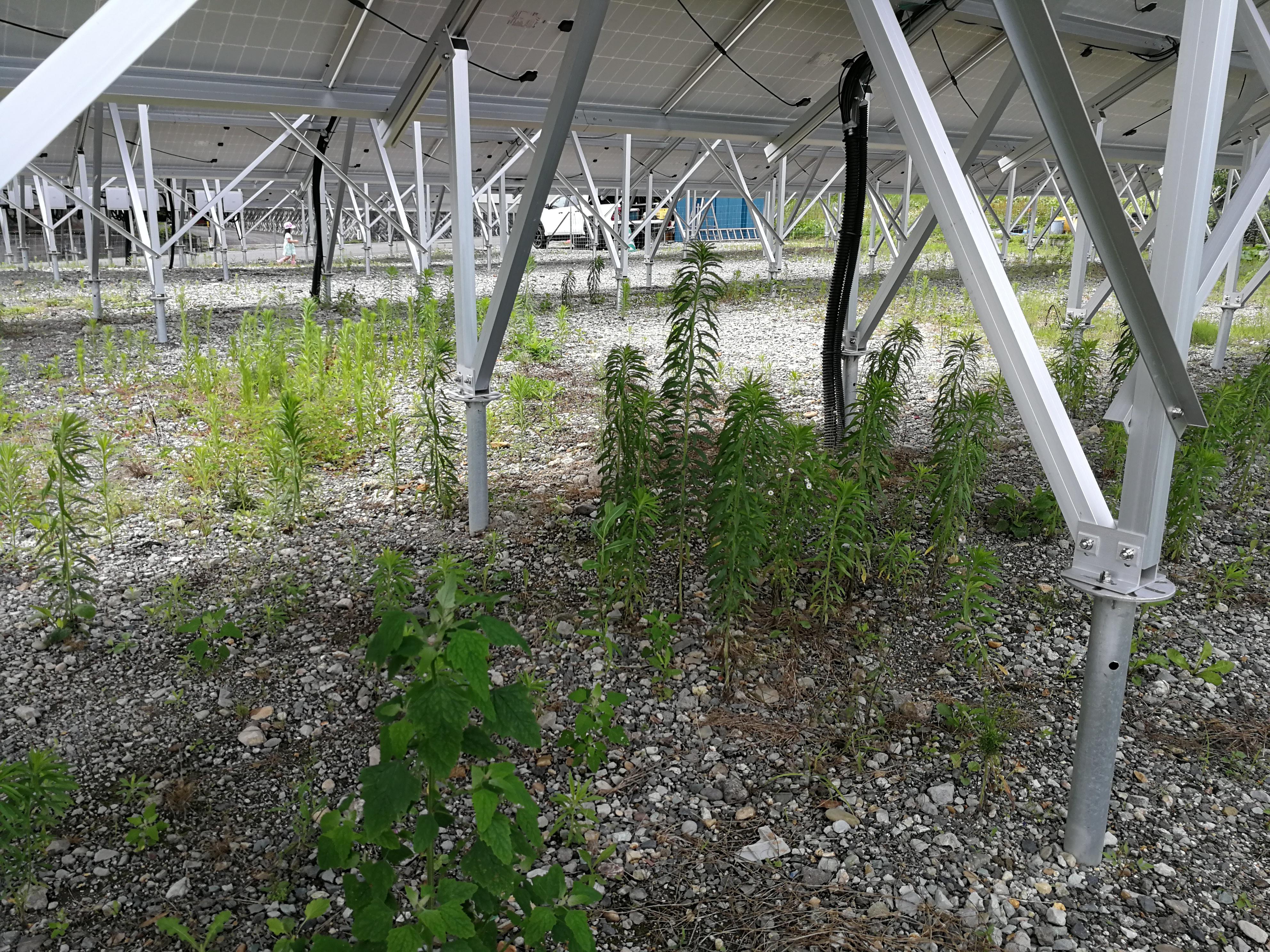 太陽光発電設備R2.7.3