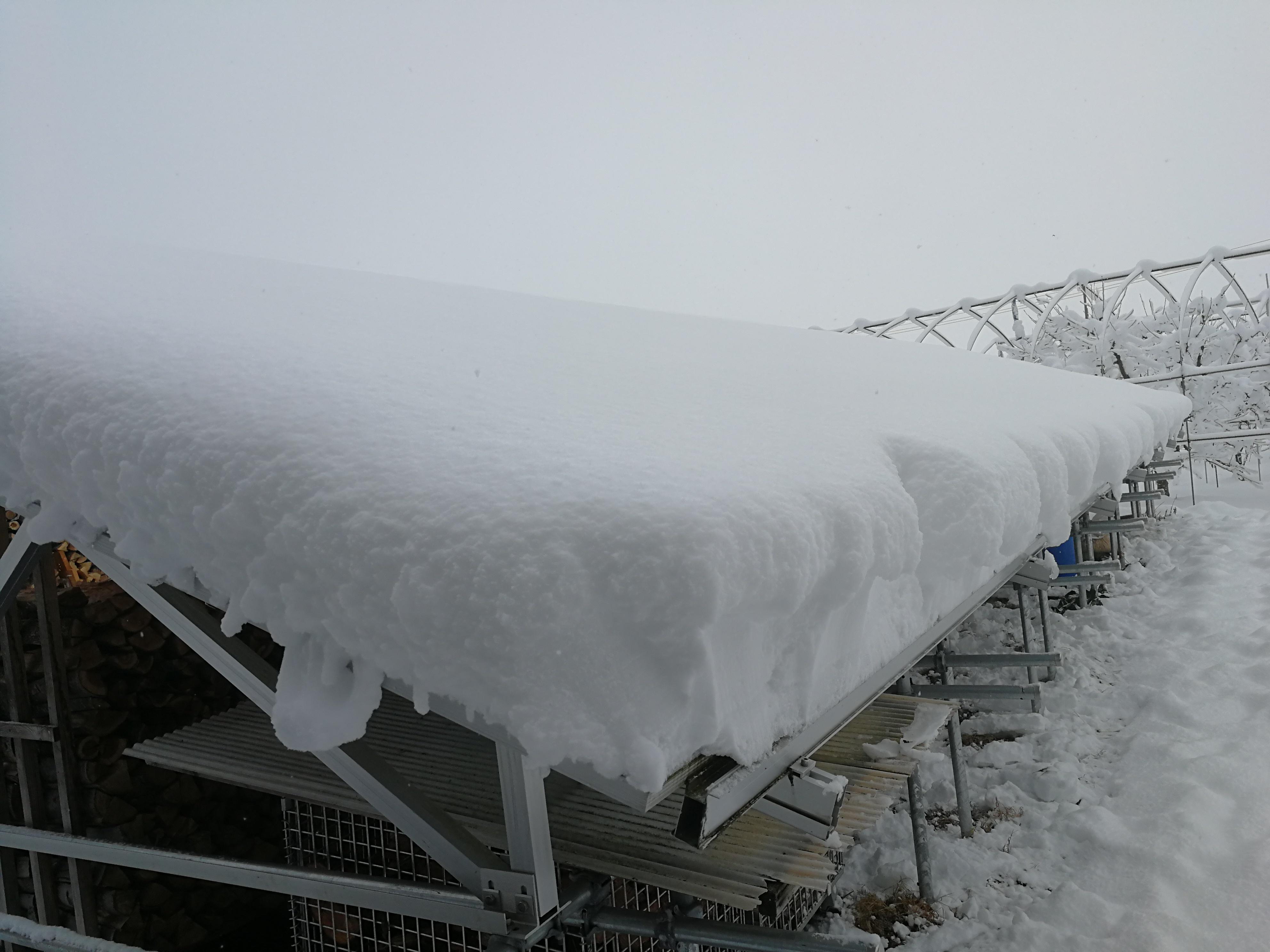 積雪2日目