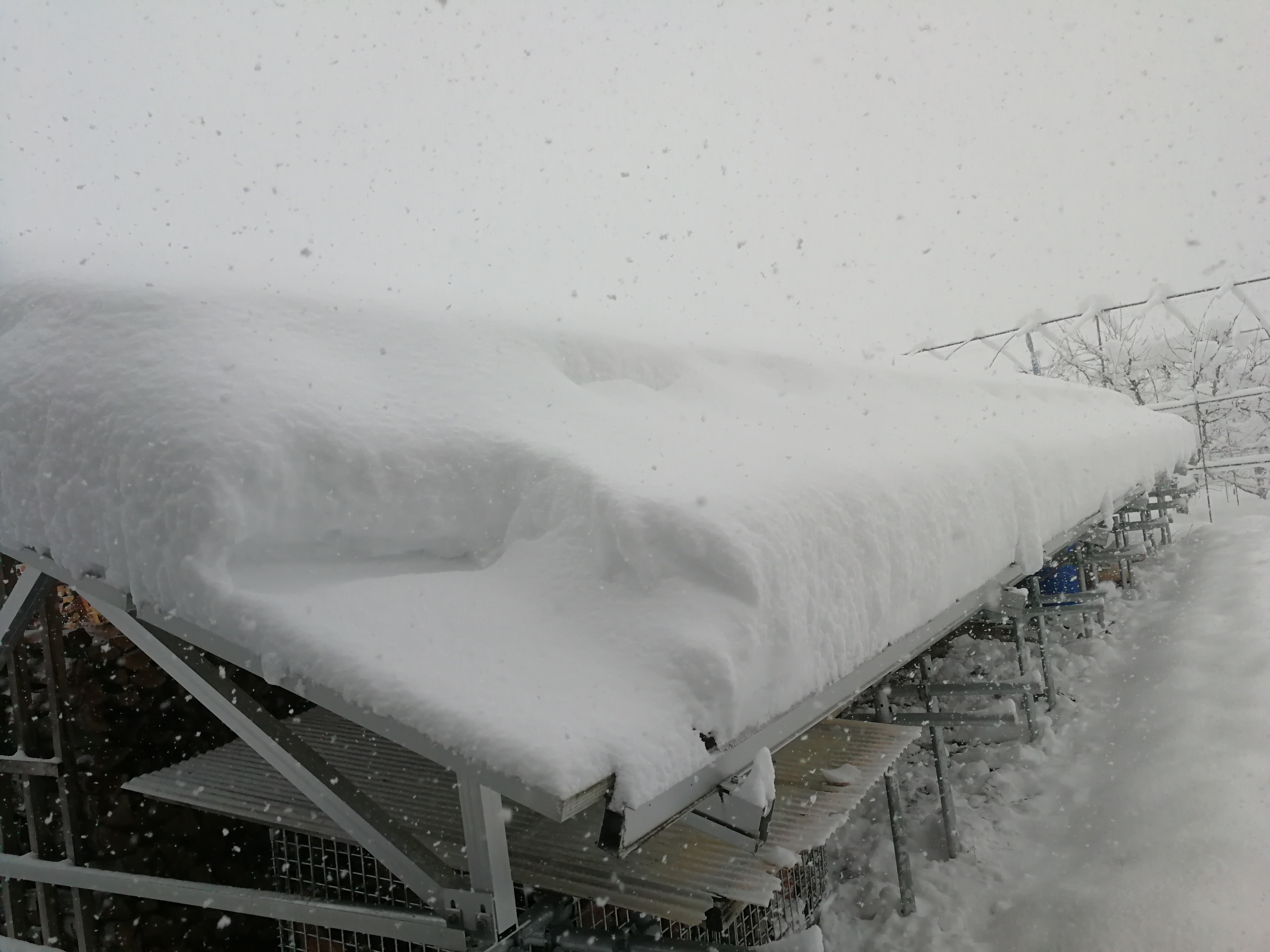 積雪3日目