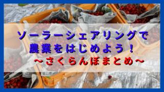 アイキャッチ さくらんぼまとめ記事